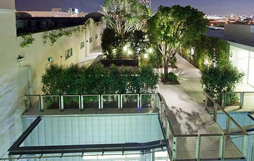 فضای سبز در پشت بام