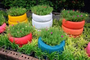 باغ لاستیکی