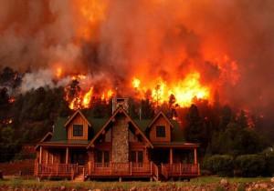 خانه ستارگان هالیوود در آتش سوخت