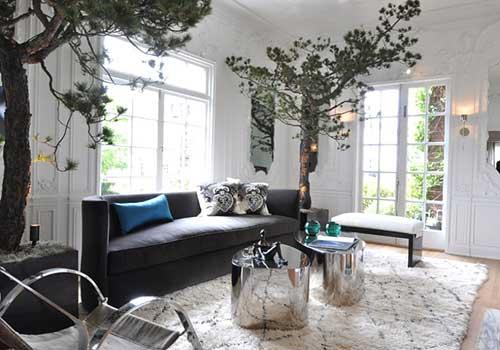گیاهان آپارتمانی خاص