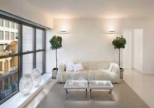 گیاهان آپارتمانی خاص مناسب برای زمستان