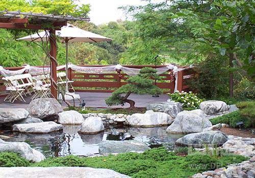 تعادل در باغ ژاپنی