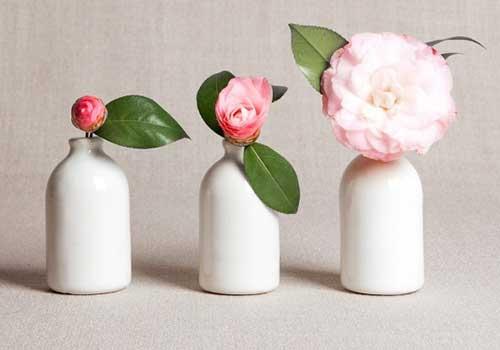 گلدان های دکوری