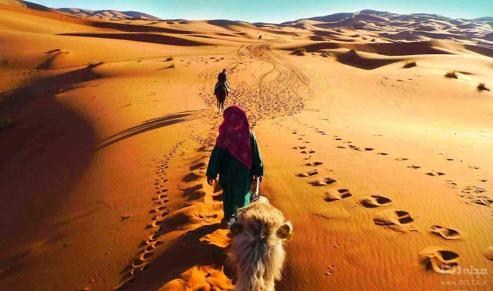 شتر سواری در کویر های ایران