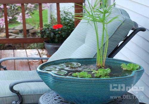 آب نما برای فضای کوچک با گیاهان آبزی