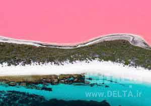 دریاچه صورتی استرالیا
