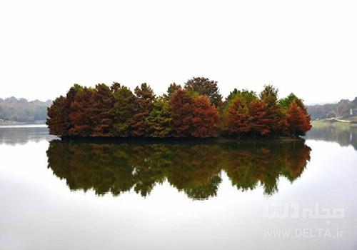 جزیره دریاچه آویدر