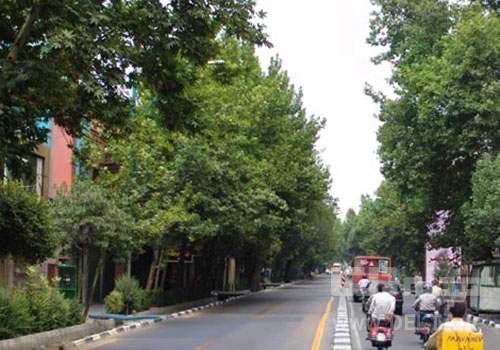 خرید آپارتمان در امیریه