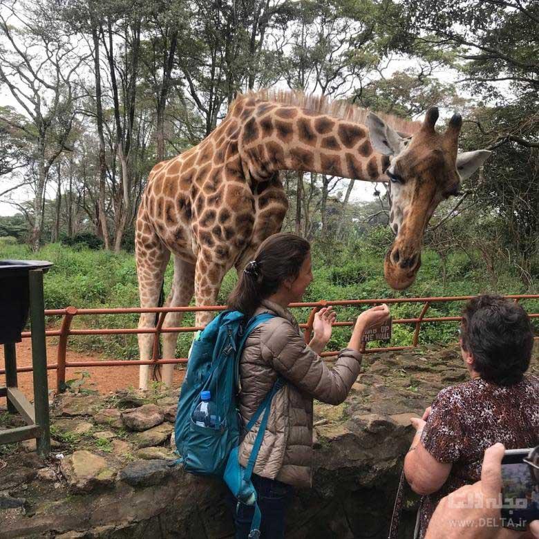 جاهای دیدنی کنیا