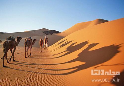 شتر سواری در کویر