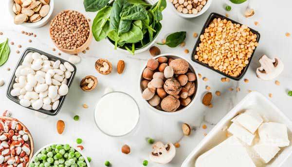 پروتئین-گیاهی