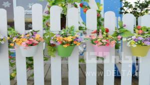 گیاهان گلدانی