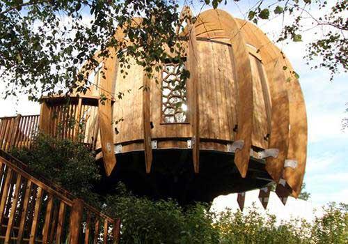خانه درختی در ژاپن