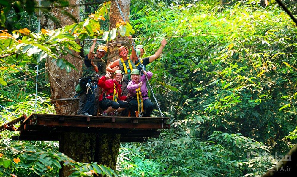 Flight of the Gibbon تایلند