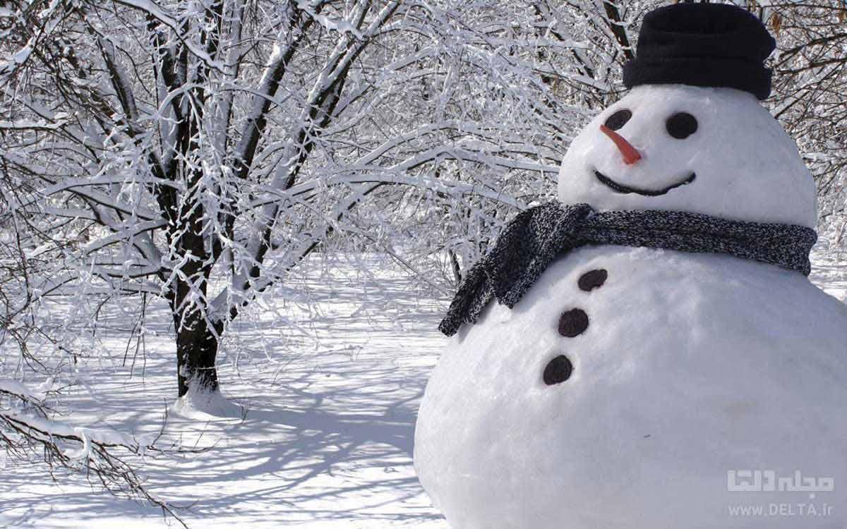 آدم برفی در روز برفی