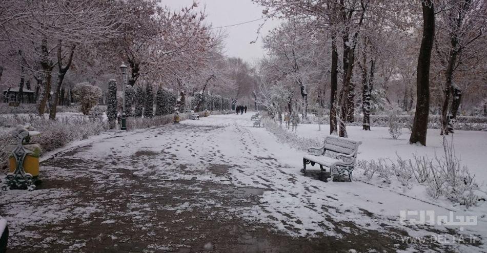 طبیعت پایتخت
