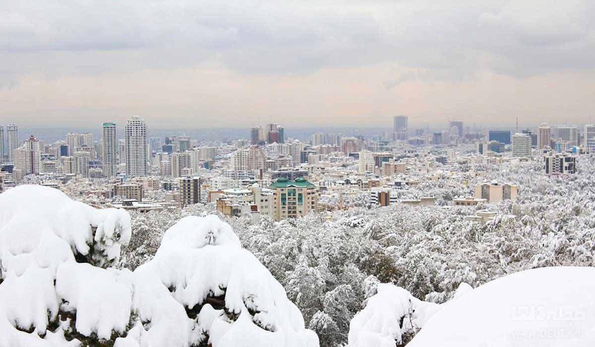 بام تهران روز برفی