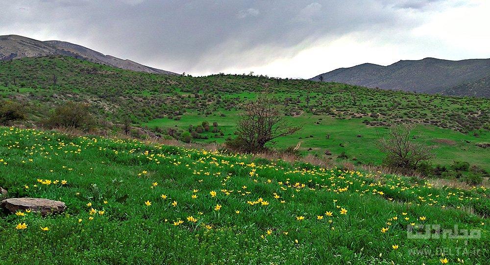 روستای طویدره کلاردشت