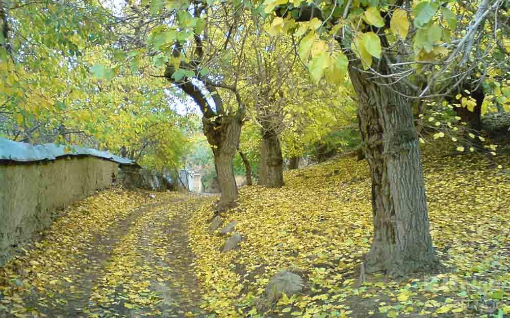آب وهوای پاک روستای واریان