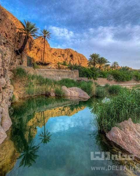 نخل های گرمه خور اصفهان
