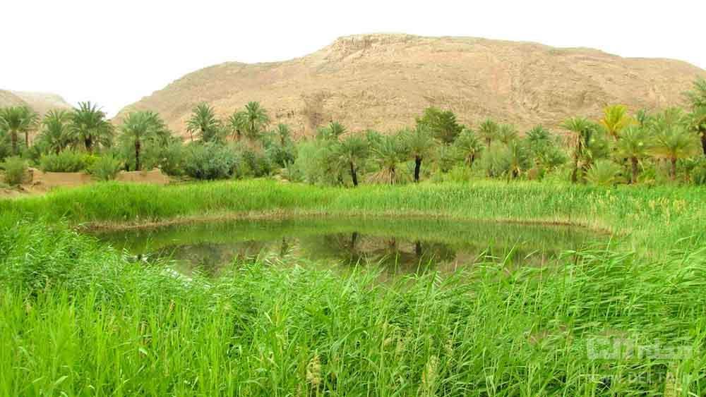 طبیعت روستای کویر مصر