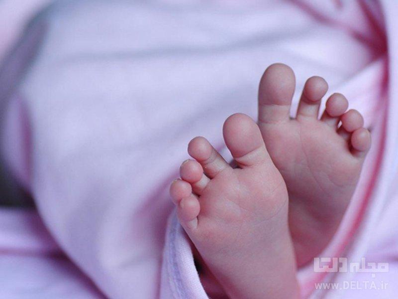 نوزاد