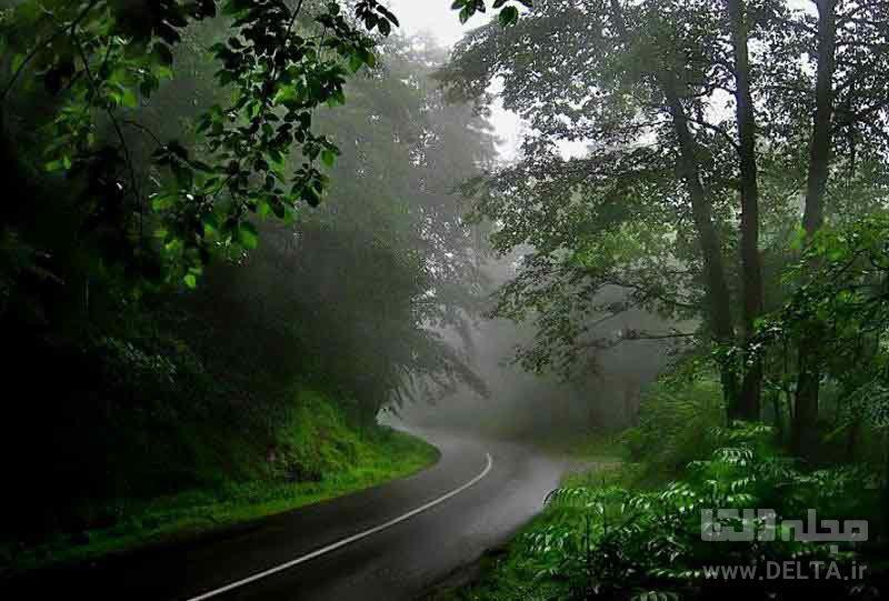 جاده عباسآباد