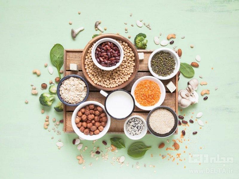 منابع مهم پروتئین