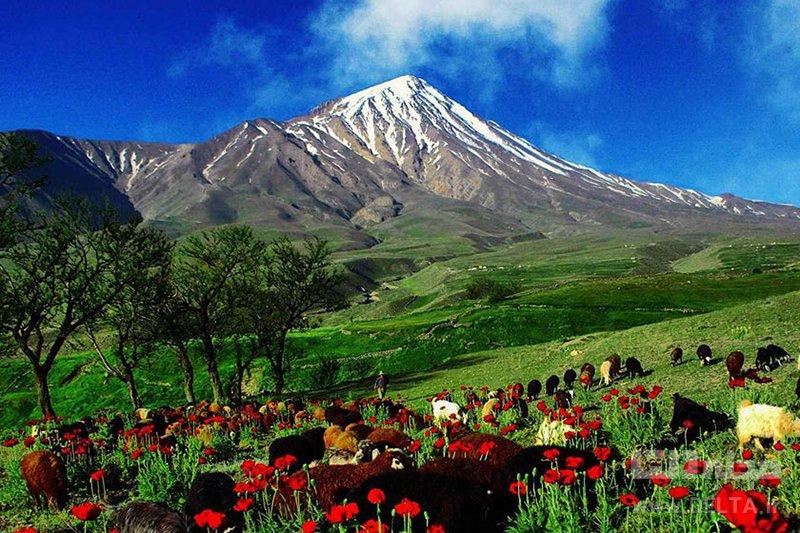 ارتفاعات پاشوره