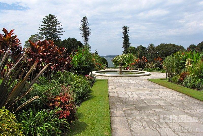 باغهای سلطنتی گیاهشناسی جاذبههای سیدنی