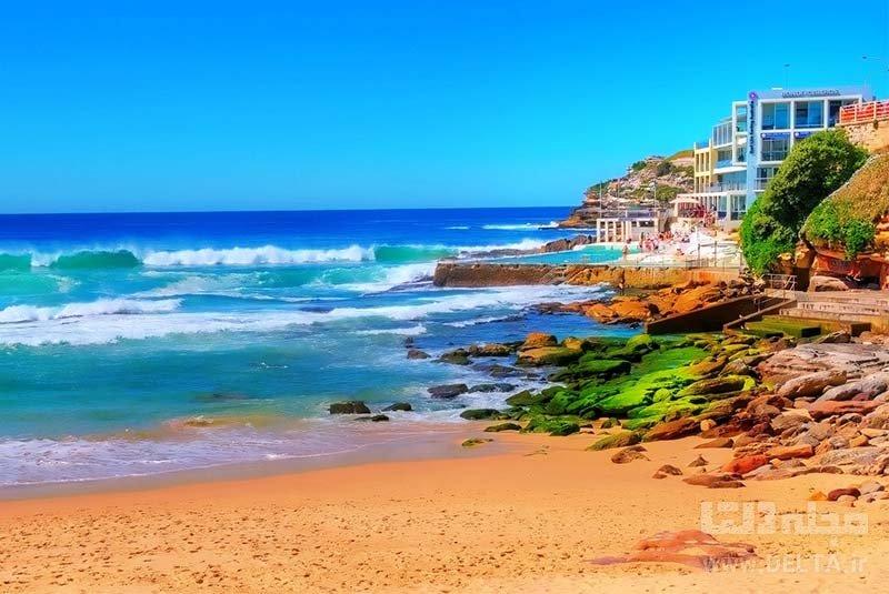 بوندای بیچ جاذبه های گردشگری استرالیا