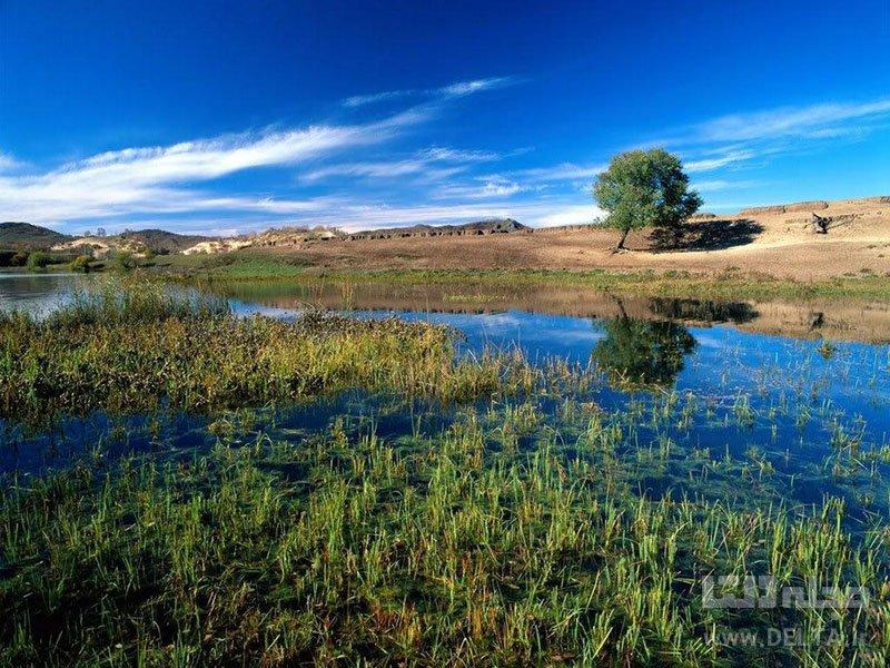 دریاچه پریشان دشت ارژن