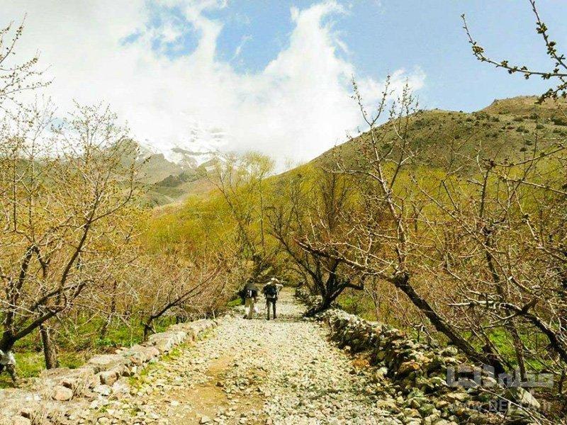 راه شاه عباسی دشت هویج