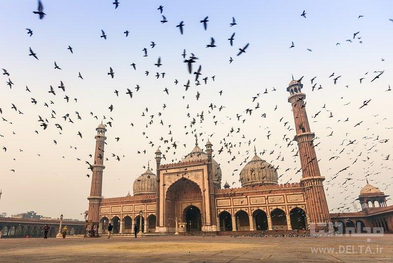 مسجد جامع جاذبههای دهلی