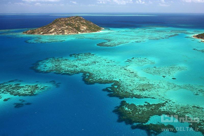پارک دریایی دیواره بزرگ مرجانی جاذبه های گردشگری استرالیا