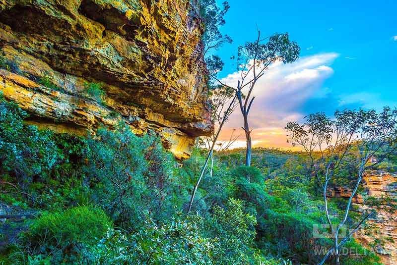 پارک ملی بلو ماونتنز جاذبه های گردشگری استرالیا