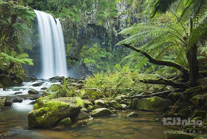 پارک ملی دینتری جاذبه های گردشگری استرالیا