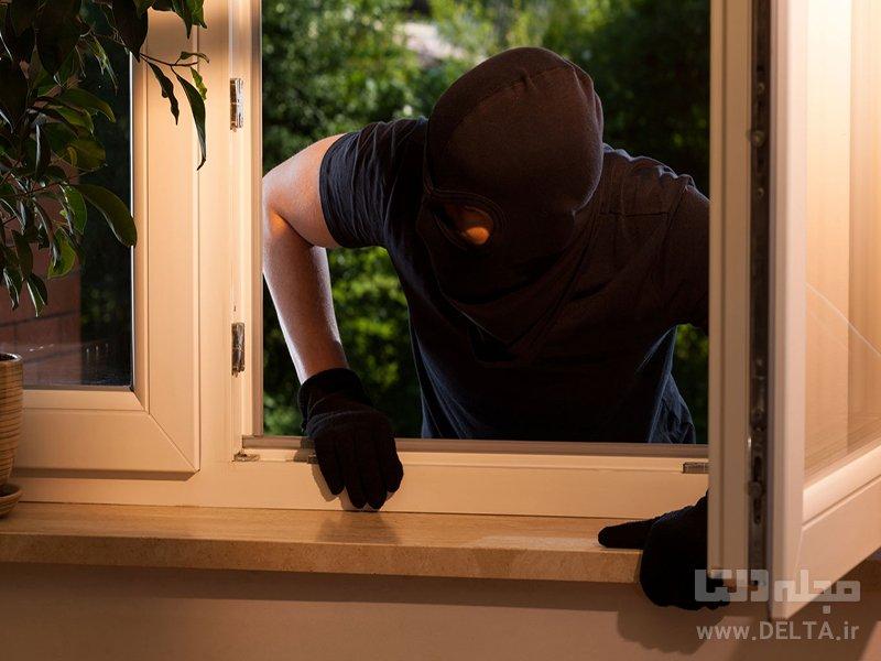آسیب رساندن به دزد