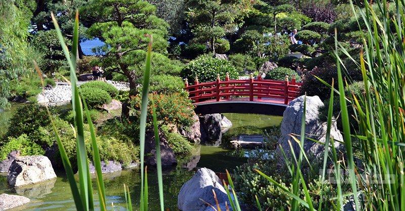 باغهای ژاپنی