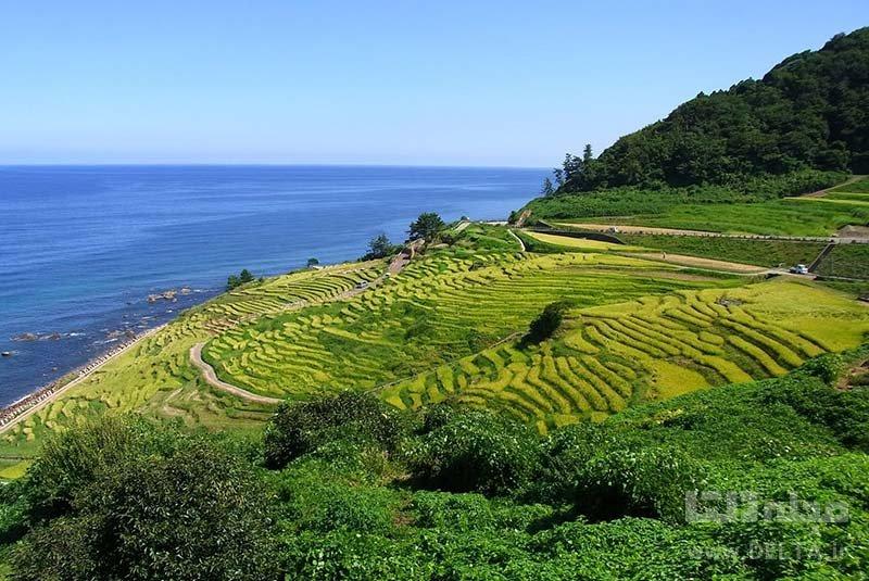 شبه جزیره نوتو تصاویر از جاذبه های ژاپن