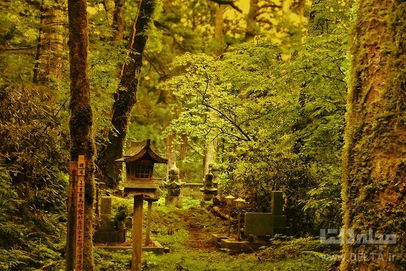 تصاویر از جاذبه های ژاپن کوه کویا