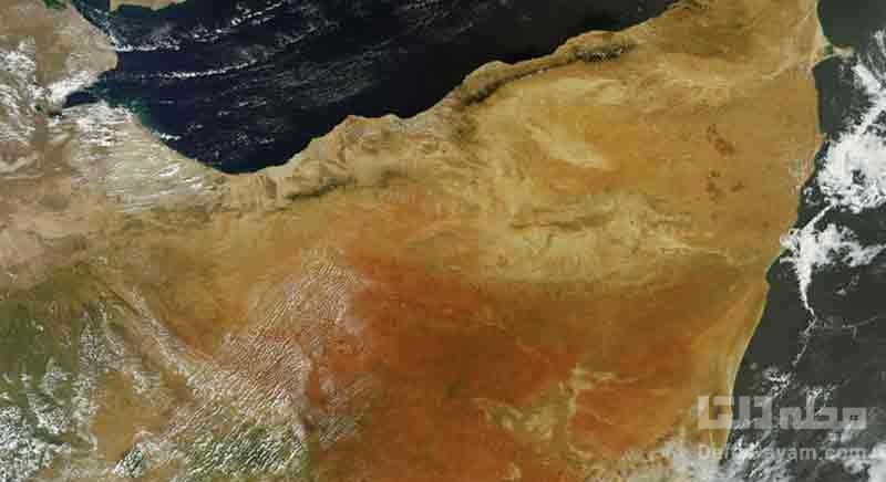 شاخ آفریقا در آفریقای جنوبی