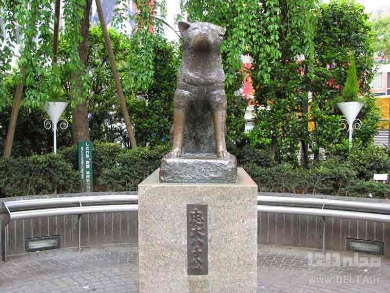 مجسمه هاچیکو توکیو