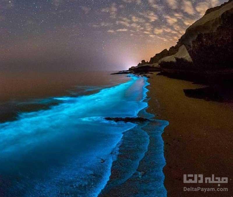 سواحل شب تاب جهان
