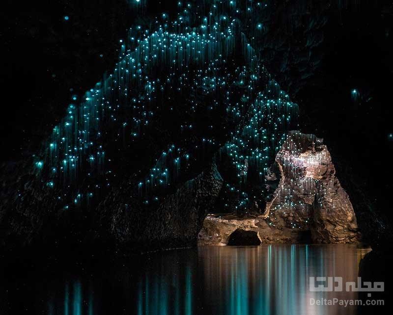 غار شب تاب نیوزلند