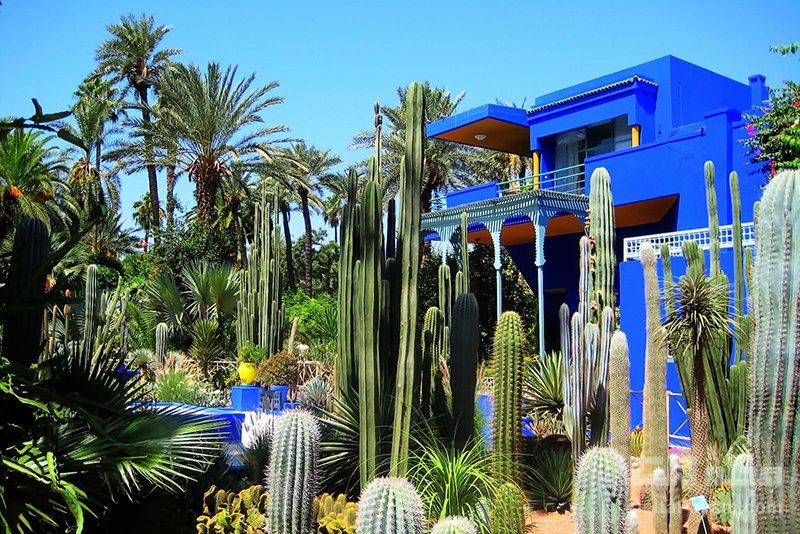گردشگری مراکش باغ ماژورل