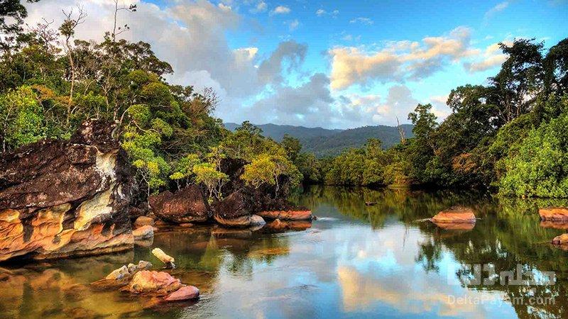 جاذبه های شگفتانگیز ماداگاسکار پارک ملی ماسوالا