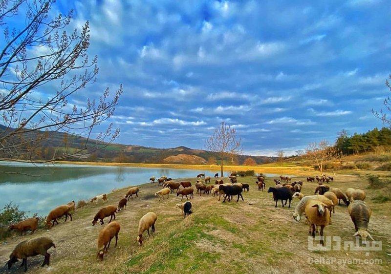دریاچه توشن تفریحات و دیدنی های دریاچه توشن