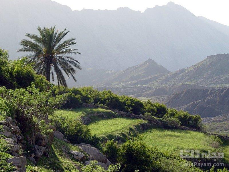 روستای شوی