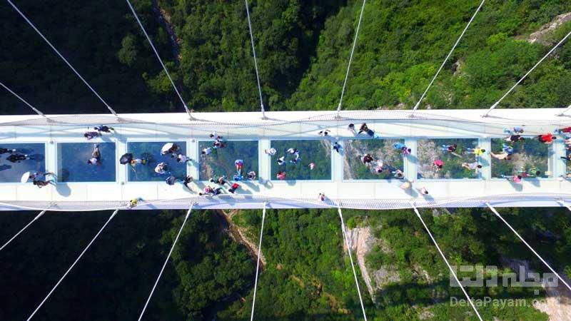 پل های معلق پل شیشهای ژانگجیاجی